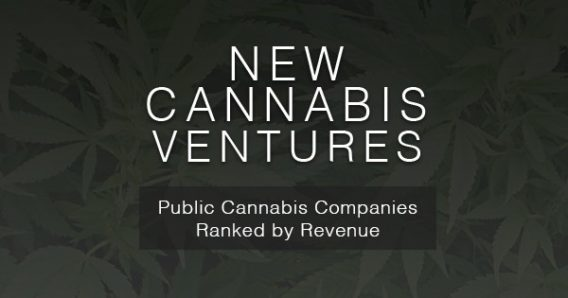 41 Top Revenue Generating Cannabis Stocks Ranked as of February 15th