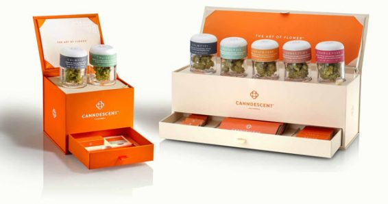 photo of California Luxury Cannabis Brand Canndescent to Invest $25.8 Million to Expand Operations to Nevada, Michigan and… image