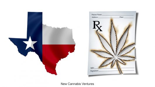 photo of Texas Cannabis Market Restrictions Stunt Growth image