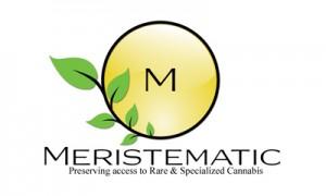 Meristematic logo